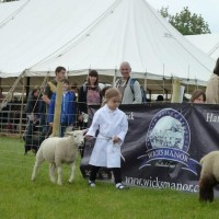 Isabelle winning 2nd place at Essex Young Farmers with Dashy